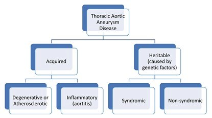 This images depicts a tree of the different causes of Thoracic Aortic Aneurysm disease, starting with Thoracic Aortic Aneurysm Disease (TAD) at the top. One branch underneath TAD leads to Acquired followed by two more branches titled Degenerative or Atherosclerotic and Inflammatory (aortitis). The other branch underneath TAD is Heritable (caused by genetic factors), followed by two more branches titled, Syndromic and Non-syndromic.